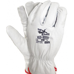 Rękawice RLCS+ WINTER